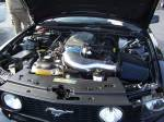 mustang engine